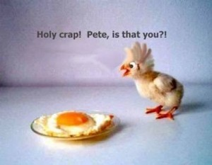 funny-easter9789-300x233
